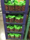 Costco berries
