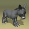 Donkeyhotay