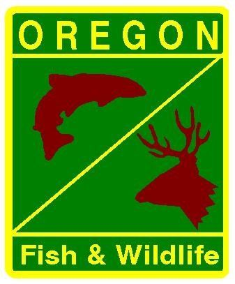 New year brings need for new licenses tags news for Where to buy oregon fishing license