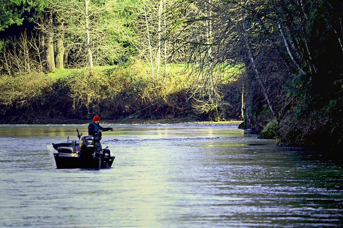 Celebrate the new year with free fishing and crabbing for Winter steelhead fishing