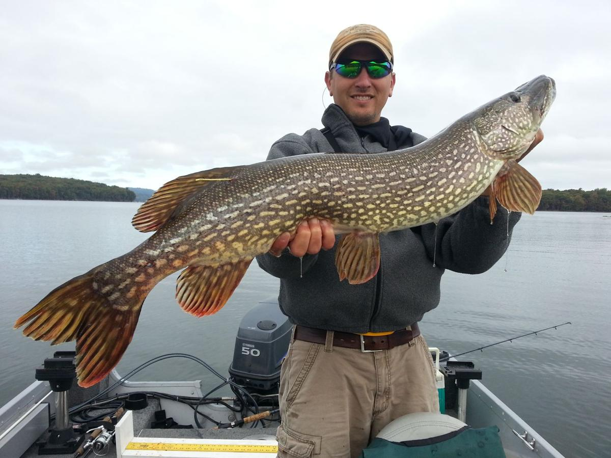 Survey respondents favor new northern pike regulation at for Northern pike fishing