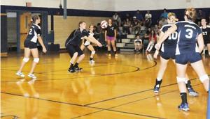 Mansfield volleyball