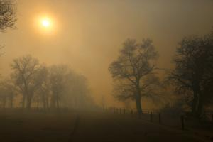 Photos: Cole Creek Fire burns east of Casper