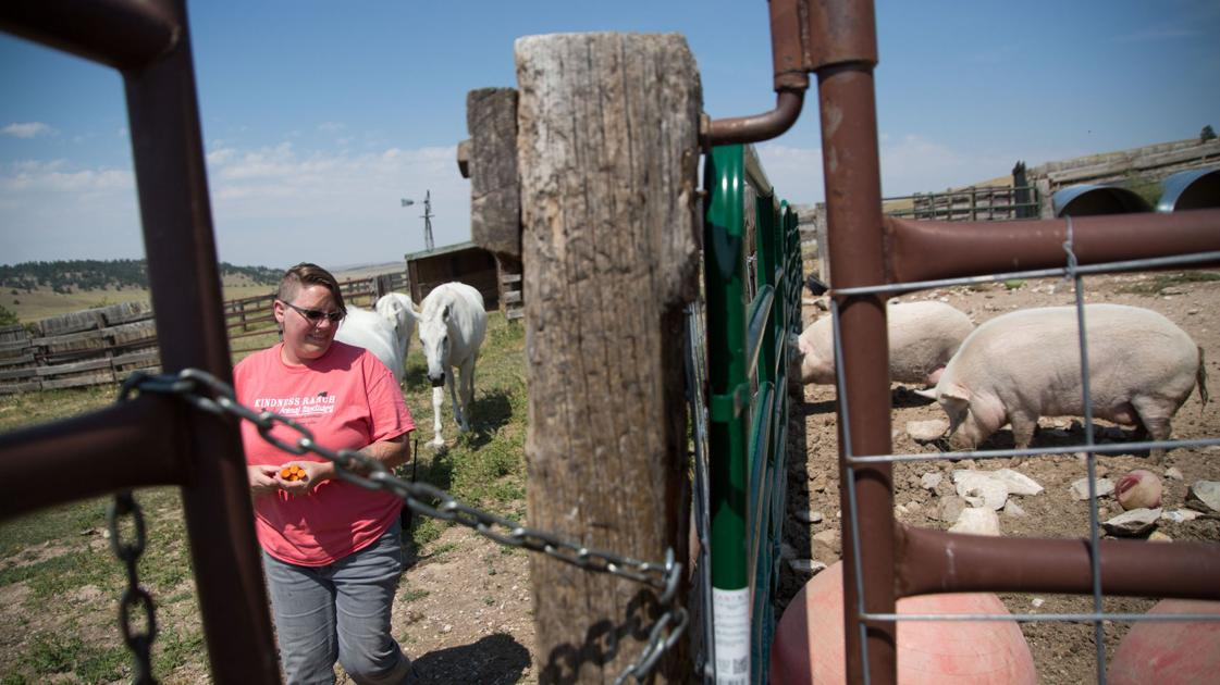 Wyoming ranch provides home to lab animals