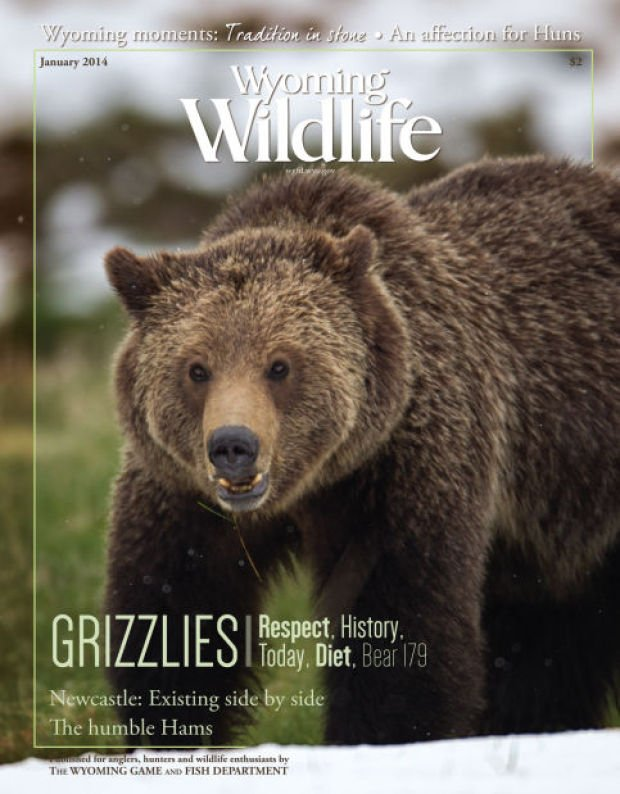 Wyoming game and fish combines publications longtime for Wy game and fish