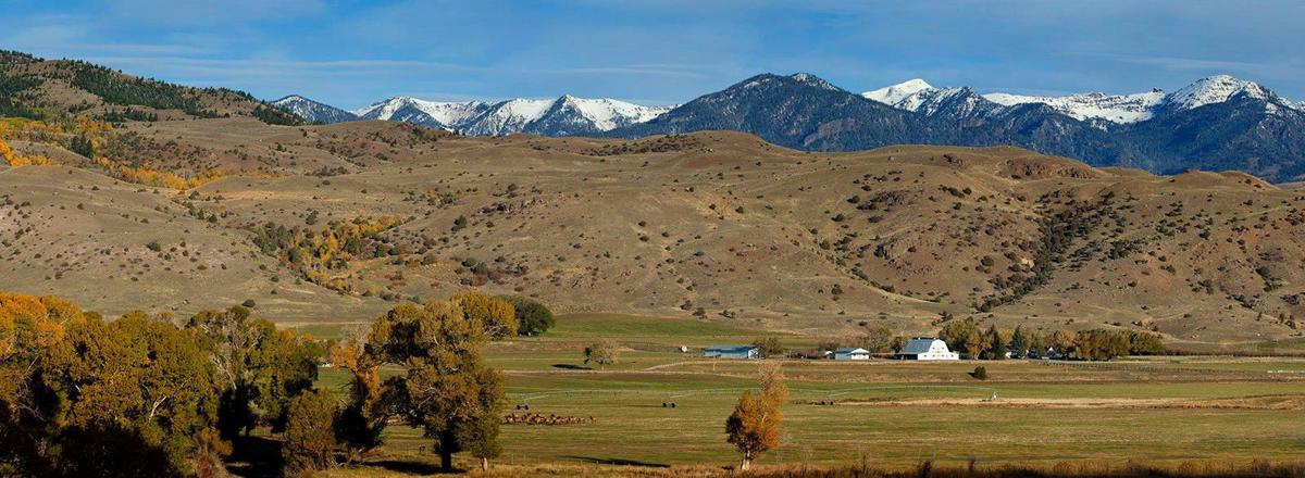 Atlanta Falcons 39 Owner Buys Montana Ranch Wyoming News