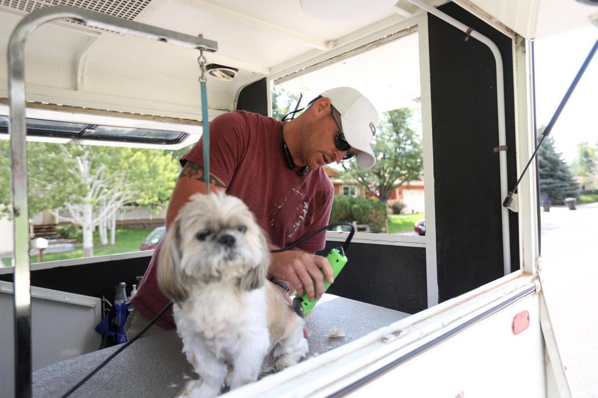 Mobile Dog Grooming Casper Wy