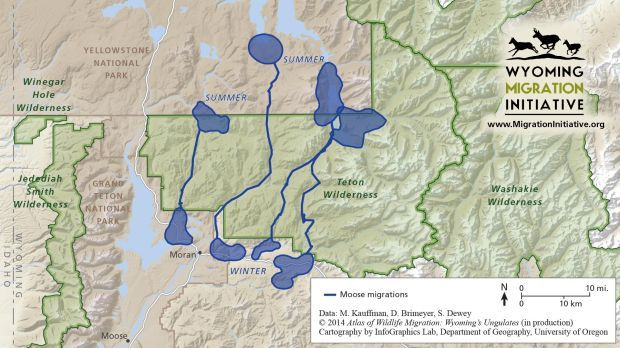 Migration routes mapped in wyoming open spaces for Georgia game and fish