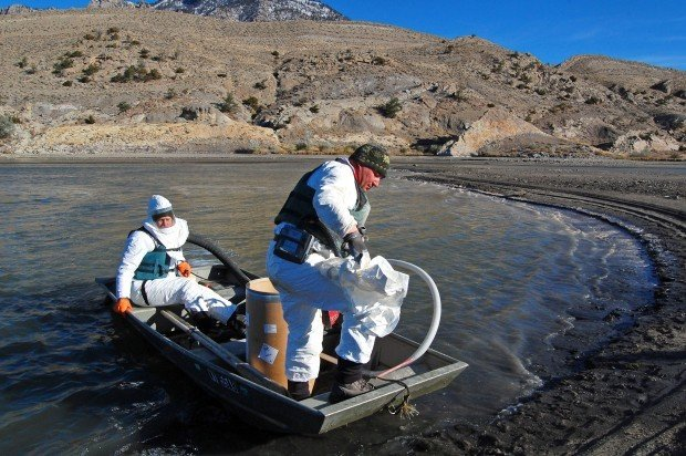 Wyoming game and fish uses toxin to remove carp make way for Game and fish wy