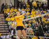 Former Wyoming volleyball player Erin Kirby signs with Volleystars Thuringen