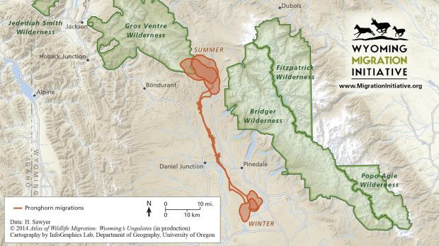 Migration Routes Mapped In Wyoming  Open Spaces  Trib