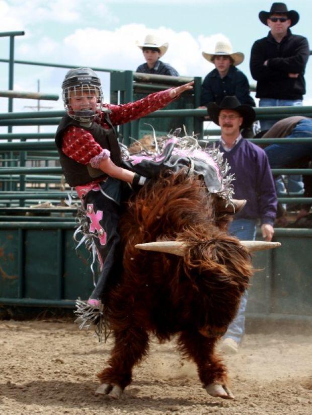 Gallery Mini Bull Riding