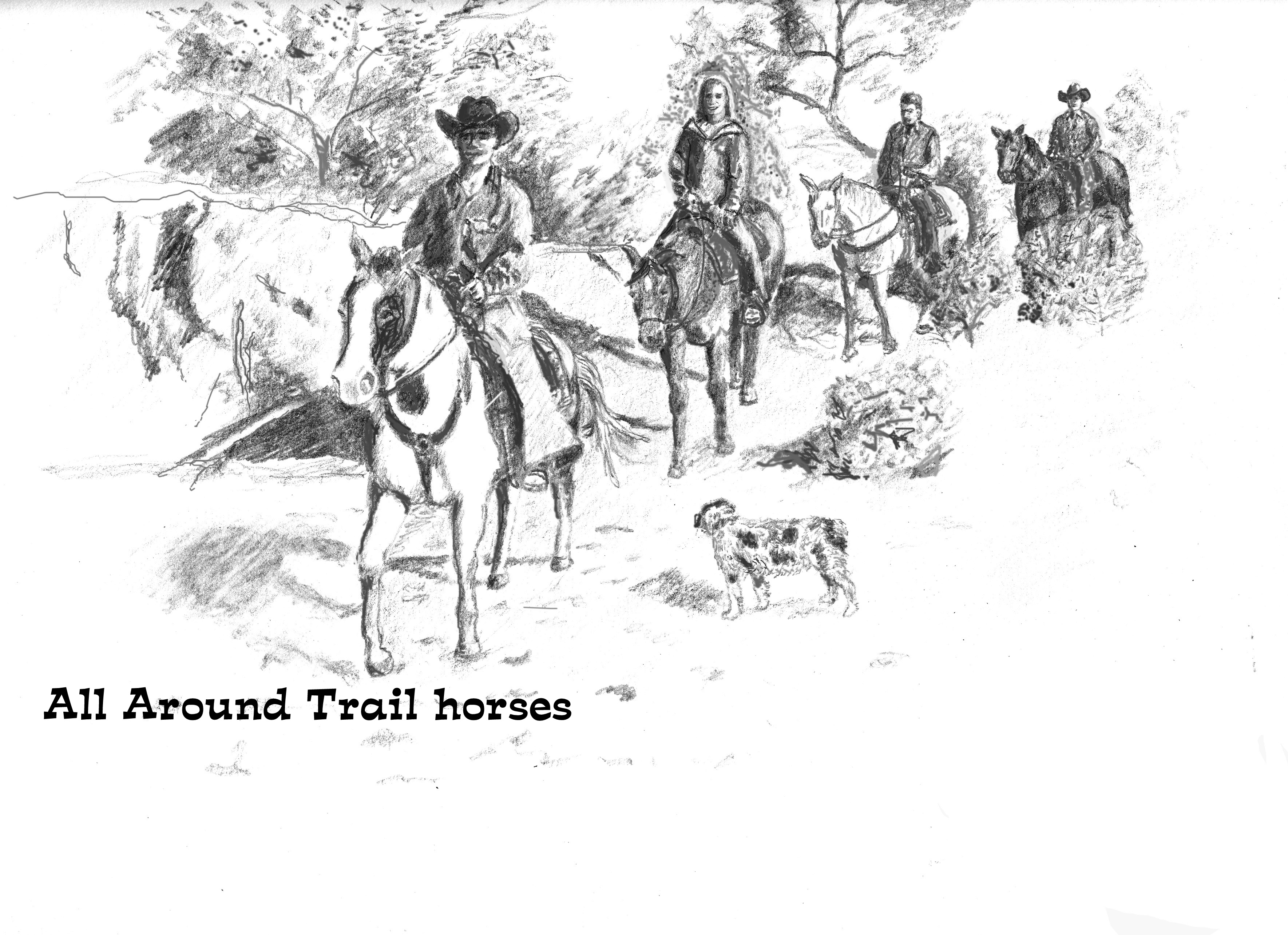 All Around Trail Horses, LLC