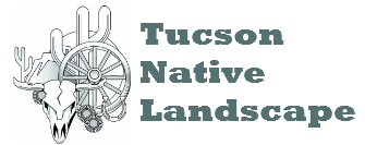 Tucson Native Landscape