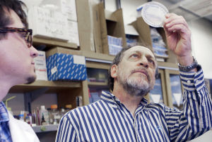 Vaccine developed at UA could prevent valley fever