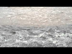 Rillito River flowing -- Again!