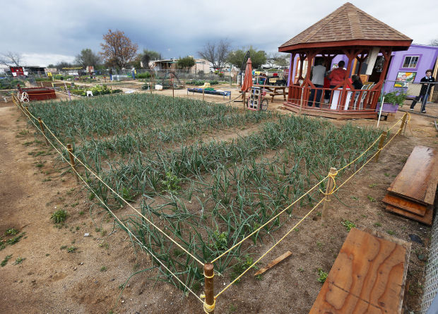 Community Garden To Grow From Proceeds Of Onion Crop