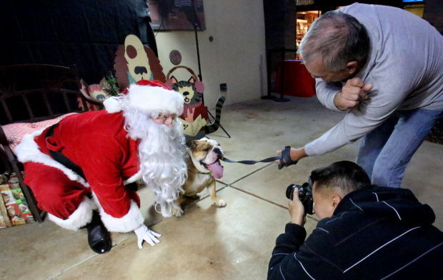 Helping Tucson's animals