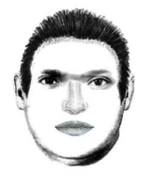 Police release sketch of Tumamoc Hill attacker