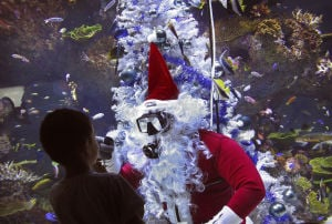 Photos: Christmas around the world