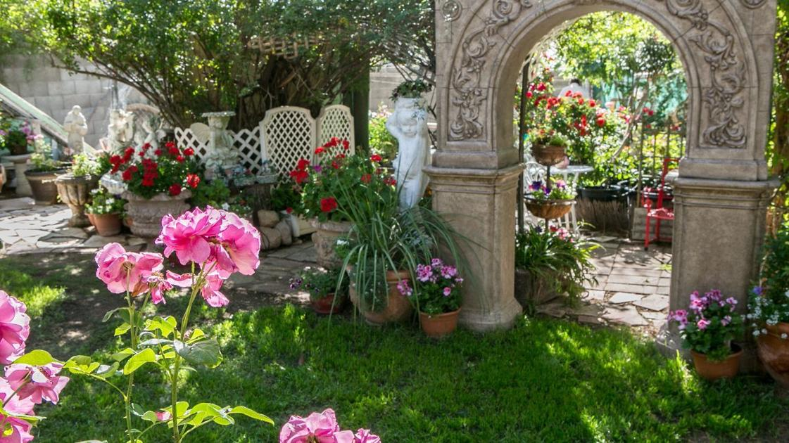 Avid Rose Collector 39 S Garden Is A Feast For The Senses