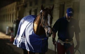 Belmont Stakes: California Chrome 'doing outstanding' days before Triple Crown attempt