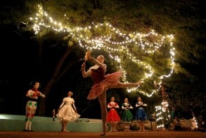Photos: Holiday Nights at Tohono Chul Park