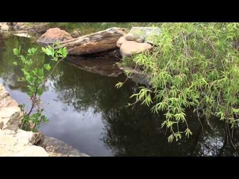 Sabino Canyon: wet, wild, dry, tranquil