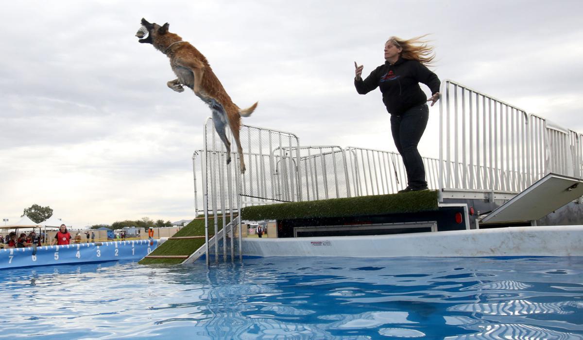 Coyote Classic Dog Show Tucson