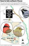 Lower San Pedro River locator map