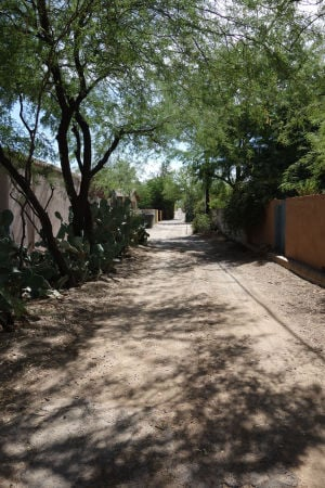 The secret wilderness of Tucson's back alleys