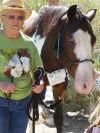 Rickie, Tohono Chul Park horse docent