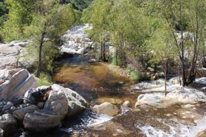 Pan for garnets in Sabino Creek