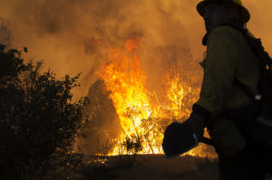 Photos: The Doce Fire