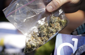 Ariz. poll shows slight majority favoring legalizing pot