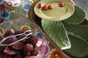 Into the wild: My first prickly pear harvest — plus recipes