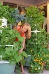 Aeroponics: No soil required for beautiful, bountiful garden