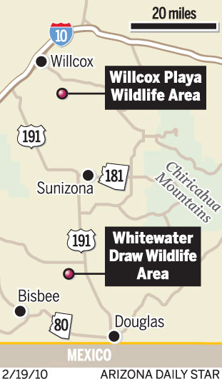 Cranes migrate there in record numbers local news for Az game and fish draw results 2017