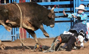 La Fiesta de los Vaqueros: Cowboys come back strong