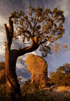Chiricahua National Monument could become a national park