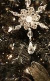Gabberts Christmas Tree