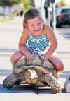 Tucson ex-con, former junkie had hit bottom, then Tank the tortoise showed him the way up