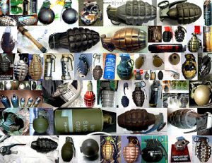 Photos: 'Leave your grenades at home,' TSA advises fliers