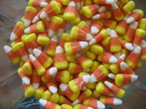 Dig up kernels of sweet candy corn info