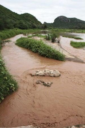Minera lamenta derrame sobre dos ríos en Sonora