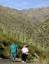 Sabino Canyon has events every day of week
