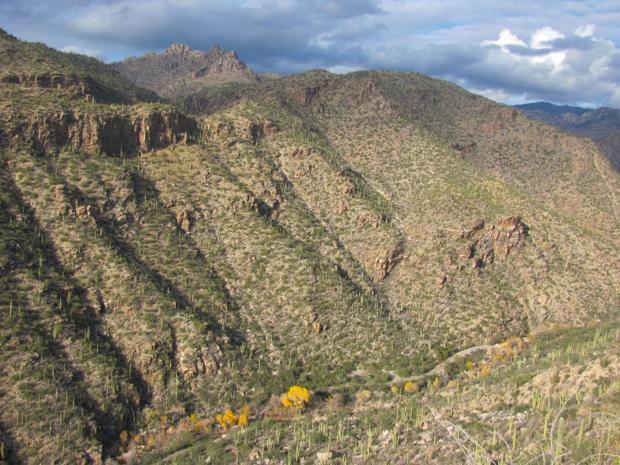 Photos: Doug Kreutz's nature picture adventure