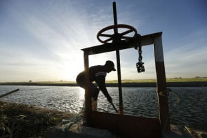 Photos: Colorado River delta water release