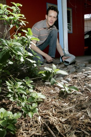 Swale idea: Simple, inexpensive ways of saving rainwater