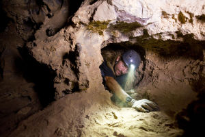 Audit: Colossal Cave needs money, leadership upgrade